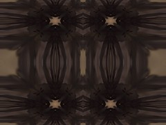 a corpse (eotiv) Tags: pink white flower art nature cg geometry shapes kaleidoscope corpse variation gladiolas