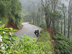 The steeds parked (chatts) Tags: india canon kerala wanderlust bullet karnataka lifeisgood tamilnadu royalenfield nilgiris chatts bandipur wyanad