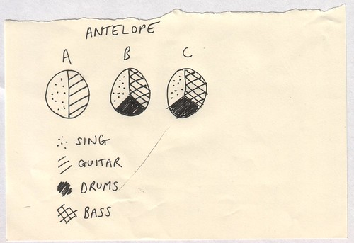 Antelope - Pie Charts