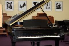 Horowitz Steinway grand piano #1