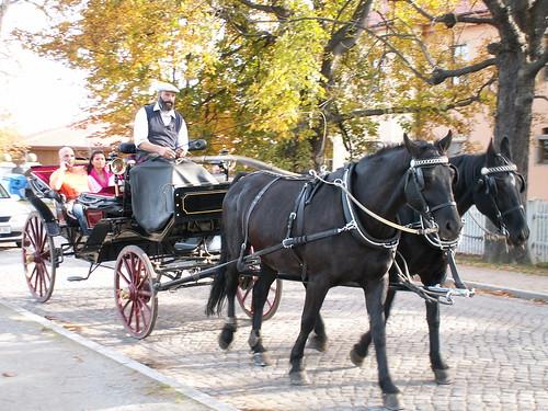 Kutschfahrten und Kremserfahrten rund um Schloß Moritzburg