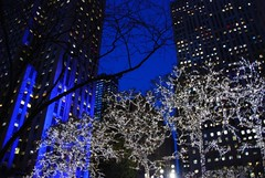 the city (*labaronesa*) Tags: christmas nyc blue holiday newyork black festive lights interestingness nikon manhattan thecity explore handheld unretouched hanukkah joyous bluelights 233 hapy lindab 18200vr d80 labaronesa 940a mywinners mywinner abigfave colorphotoaward impressedbeauty ultimateshot holidaysvacanzeurlaub frhwofavs heartawards betterthangood coloursplosion colorsplosion goldstaraward