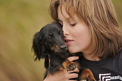 puppy love (robferblue) Tags: dog cute love girl puppy kid paw pretty braces sophie teenager lovely soppy daschund impressedbeauty superaplus aplusphoto