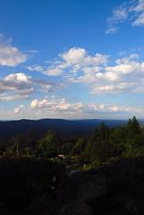 Looking Across the Blue Mountains (antonychammond) Tags: australia bluemountains newsouthwales blueribbonwinner mounttomahbotanicgarden onlythebestare
