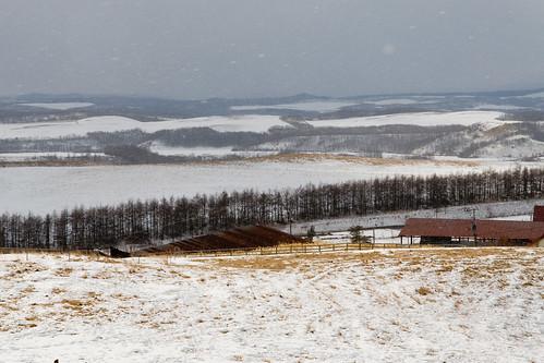 Shibecha Tawadaira Farm