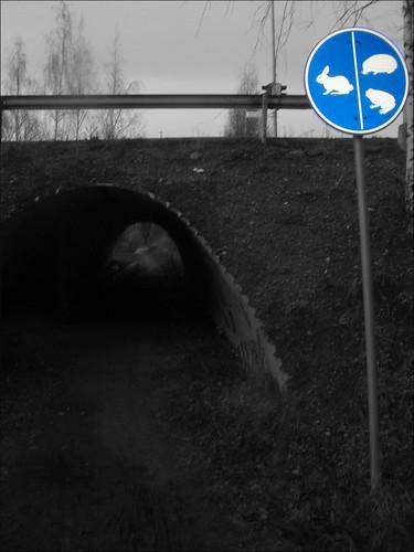 Attraversamento sicuro - by Suomi2005