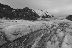 Icefield (Goran Joka) Tags: icefield glacier ice snow gergetiglacier kazbek mtkazbek mountkazbek caucasus georgia caucasusmountains blackwhite blackandwhite monochrome nature landscape outdoor gergetiicefield