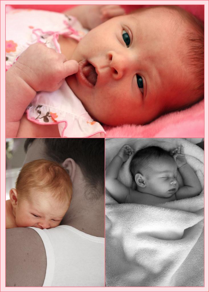 Baby Phillipa - Tri Image