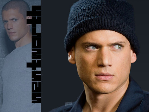 Greta Garbo 2 · Ladybugs · Wentworth Miller 6; ← Oldest photo