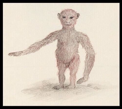stylised ape (detail)