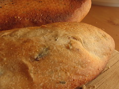 Olive Thyme Baguettes