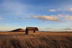 Alone (donegone) Tags: sky newmexico rural landscape nikon grasslands d300 18200mm littlestories johnsonmesa aplusphoto picswithsoul photocontesttnc08