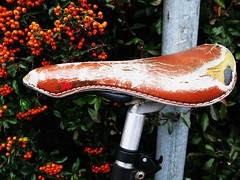 Berry Worn Saddle