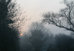 Early start (judy dean) Tags: morning pink winter sun grey aplusphoto diamondclassphotographer platinumheartaward