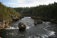 Yellowstone River (Canyon Village, Wyoming, United States) Photo