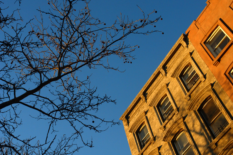 brownstone goldenhour