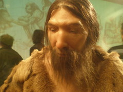 Neandertal man replication