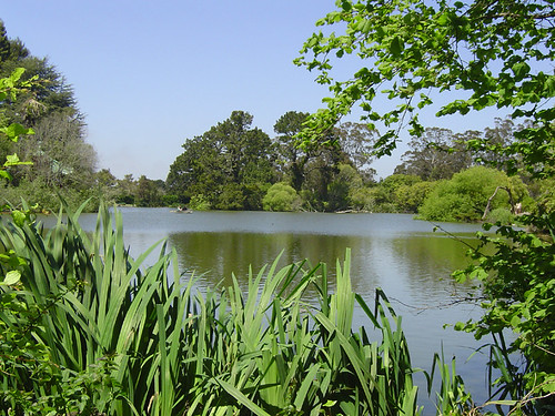 Golden Gate Park - Hidden Lake