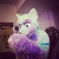 Always recording ^-^ #gopro #cfz (Keenora Fluffball) Tags: keenora fursuit furry kee