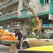 Alexandria cart - Egypt Study Abroad