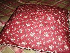 Aggie Pillow back
