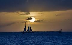 Everglades Sunset (Goianobe) Tags: crt earthday goldenglobe mybestphotos 5photosaday freenature flickrbr worldtrekker spiritofphotography olquebonito beautifulsecrets grouptripod baugroup prioceless goianobe