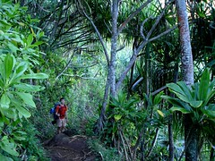 (SWBatzer) Tags: hawaii kauai kalalau napalicoast