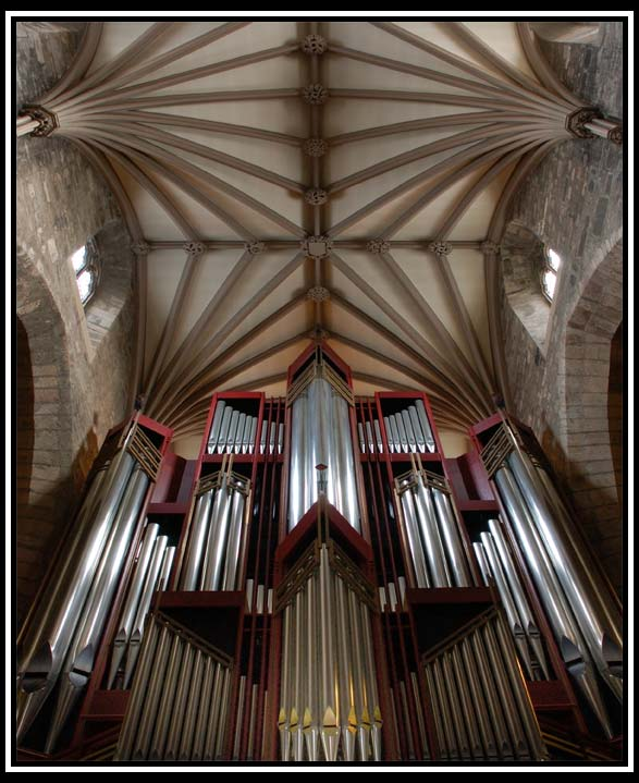 St. Giles Ceiling & Organ Pipes