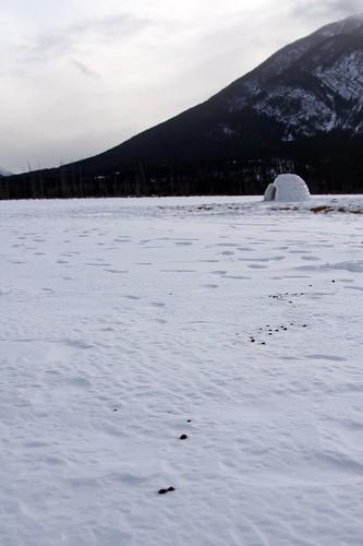Un iglú en medio de la nieve