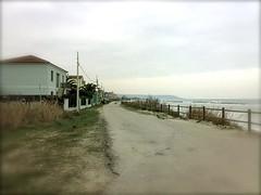 Il mare d'inverno - 2 (foto_quindi_sono) Tags: maredinverno mare spiaggia torinodisangro abruzzo lanciano chieti