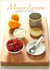 Baking with Meyer Lemons (La tartine gourmande) Tags: friends home cake fruit dinner baking berries lemons citrus meyer mousse latartinegourmande