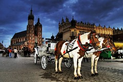 krakow: the cab (smif) Tags: people horse church canon carriage basilica flash mary eu poland polska krakow medieval cobbled cobblestone pedestrians kr 2008 krakw cracow stmaryschurch europeanunion cracovia marketsquare sukiennice cracovie rynek kon krk pl krakau horsedrawncarriage pologne clothhall mainmarket krak stmarysbasilica passerbys krakoff smif xti 400d copyrightbysmif krlewskiestoecznemiastokrakw horsesdrawncarriage szczepaska