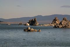 Mono Lake Tufa (dcnelson1898) Tags: california lake water desert monolake tufa rockformation monocounty alkalilake