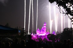Believe in Holiday Magic Fireworks Spectacular (armadillo444) Tags: fireworks disneyland sleepingbeautycastle believeinholidaymagic