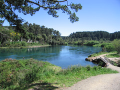 IMG_3943 (kenorrha) Tags: newzealand nznorthisland scenicsnotjustlandscapes