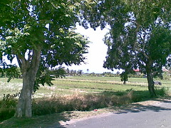 20112007(015) (petersimpson117) Tags: pererenan umahpeter