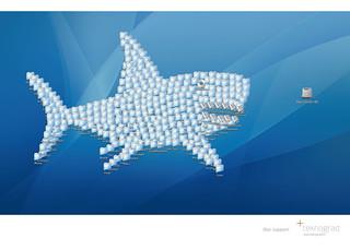 Teknograd Ad - Shark