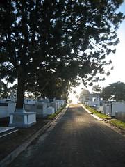 Silence's street (IDIAY) Tags: street monday onemoreday silences