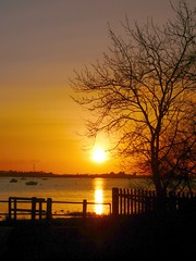 tree view (khanrizzi) Tags: sunset sea sky tree beach nature silhouette evening bosham westsussex harbour solent goldstaraward
