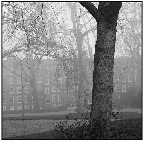 Foggy London Morning