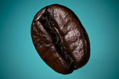 A Coffee Bean 1