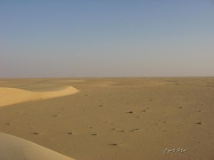 (wosom) Tags: sand desert arab doha qatar bedouin         aplusphoto