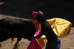 tienta 01 (ma_n_u_e_l) Tags: corrida sville tienta ganaderas
