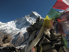 Macchapucchre Prayer Flags-Annapurna Base Camp Trek-Nepal (mikemellinger) Tags: prayerflags annapurnas snowcappedmountains macchapucchre annapurnabasecamp nepalhimalayasnaturescenery