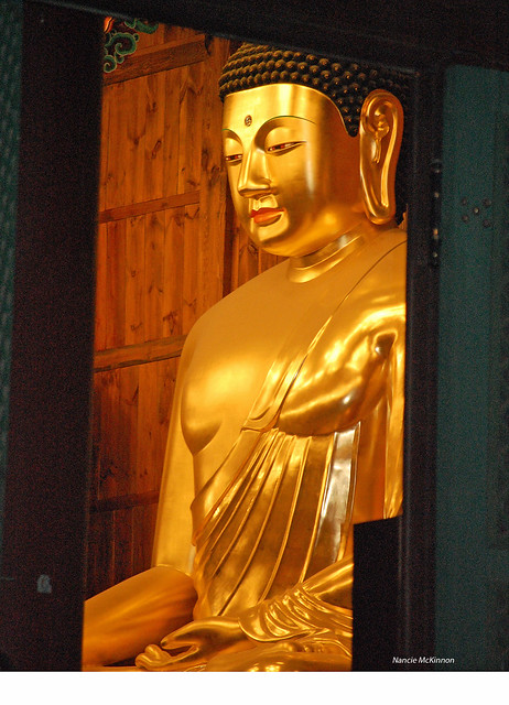 The Buddha's Gaze