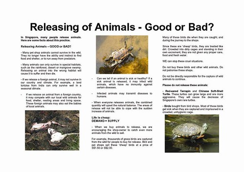 Releasing of Animals - Good or Bad? (pg. 1)