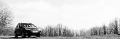 _DSC4181bw (rotor_flux) Tags: subaru subaruforester forester sh forestermk3 forestersh nikon nikond90 woods forest mountain tokina1224 tokina tokina124 nikond90tokina 1224 winter wideangle wide