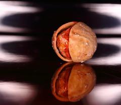 In-between - Macro Monday (۞Thalib۞) Tags: pistachio macromondays macro closeup reflextion canon7dmii canon100mmf28lis thalib spacebetweenus inbetween