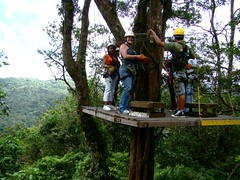 Zip line in Costa Rica (CISabroad) Tags: pictures travel for photos sanjose international study volunteering cis intern center studies study costaricaodumarch09canopytour abroad cisabroad cis customizedprogram intern towsonuniverisity