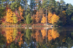 Autumn Reflections (shutterBRI) Tags: autumn trees lake reflection fall water leaves digital canon reflections eos nc northcarolina raleigh 2007 5014 carolinas lakelynn shutterbri 40d brianutesch brianuteschphotography